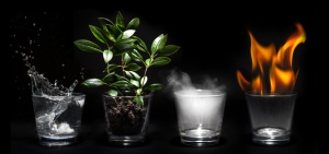 elements Shutterstock